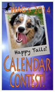 calendar-contestweb