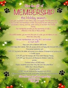membership_poster_xmas