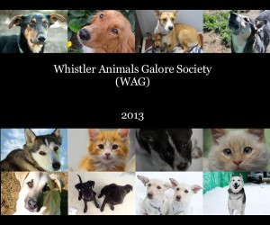 WAG Yearbook Cover