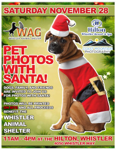 WAG PET PHOTOS POSTER BORDER