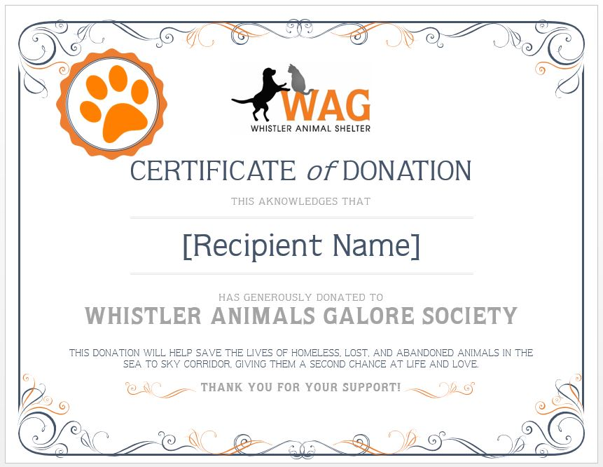 Memorial Donation  Whistler Animals Galore Wag  WhistlerS