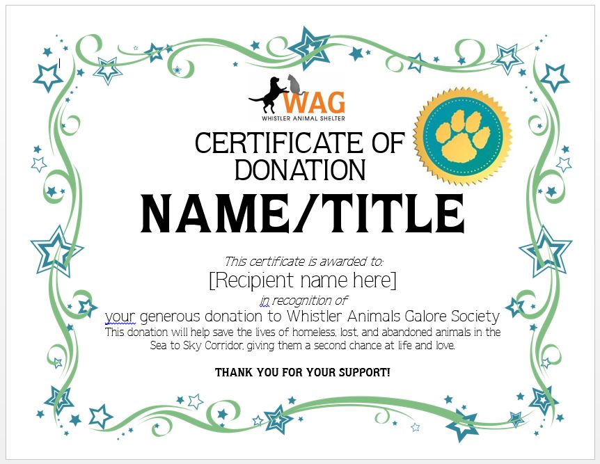 KIDS DONATIONS  Certificate Of Donation Template