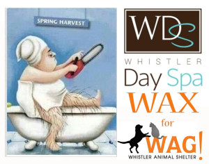 wax for wag