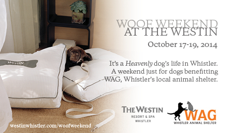 Woof Weekend Flyer JPG