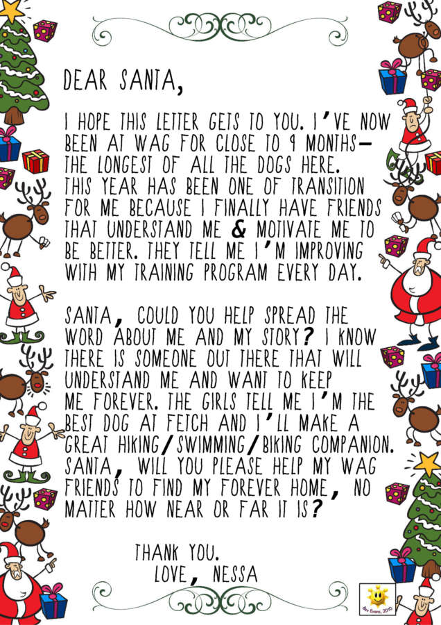 letters to santa fundraiser letters to santa whistler animals galore wag 18967 | nessa letter