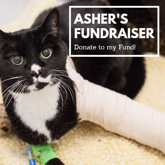 ashers fundraiser