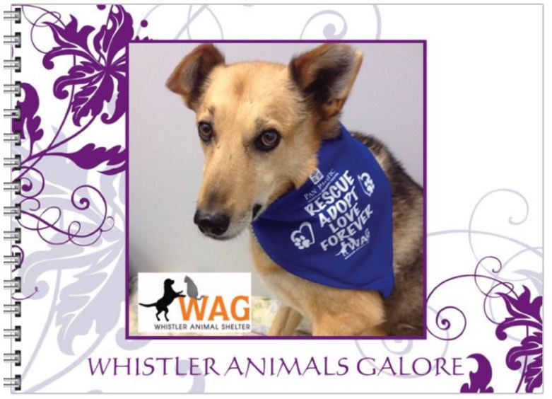 WAG Photo Book: Perfect for the coffee table on Christmas morning, this book includes glossy photos and what makes WAG truly special.  Only $15! Available at WAG and at Whistler Happy Pets in Function Junction!