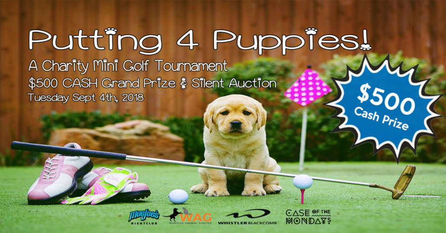 putting for pups2