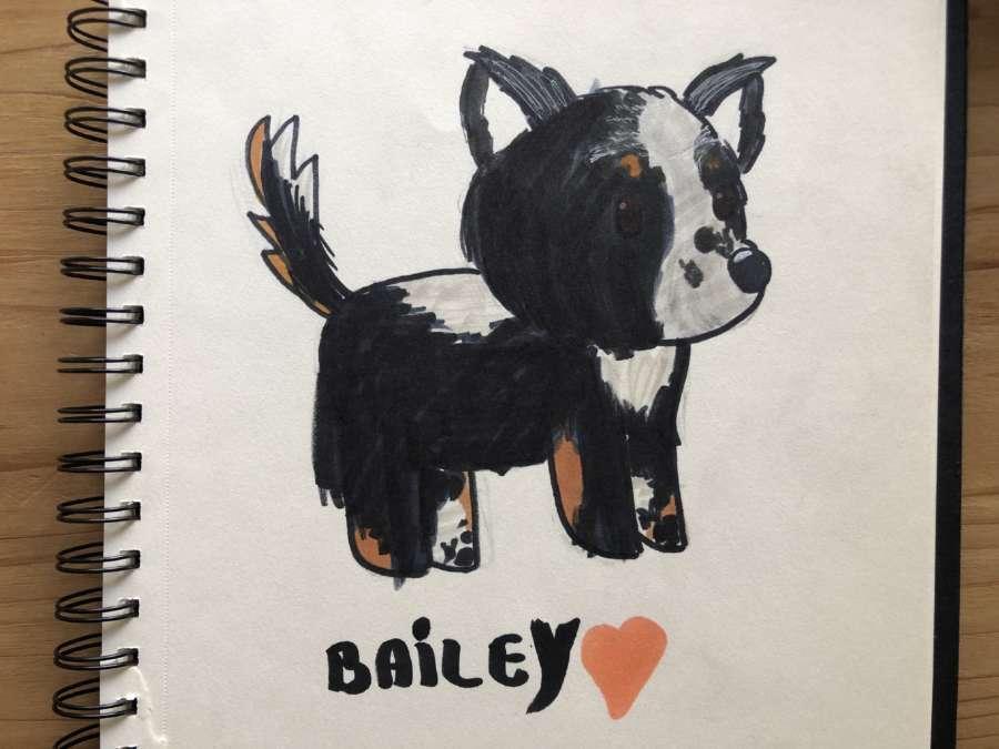 Bailey1